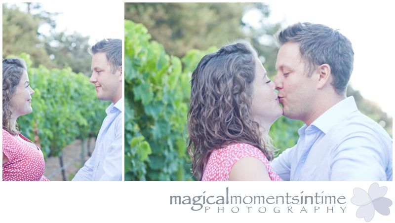 maternity photos in vineyards at groot constantia cape town kissing