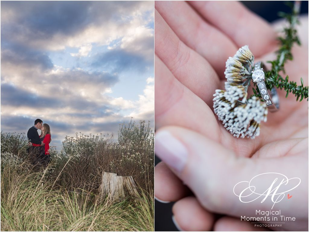 ring shot with fynbos at sunset in tokai