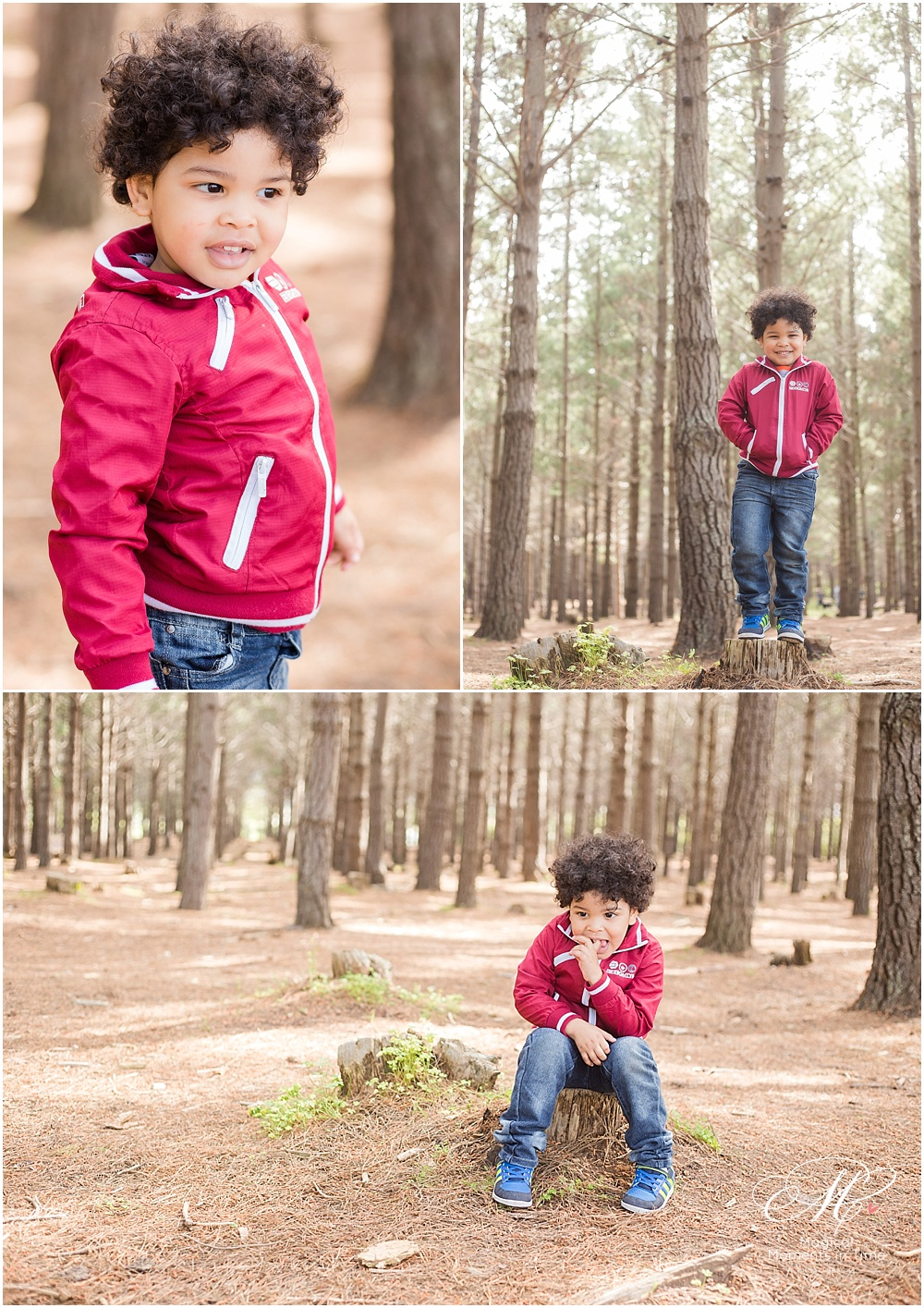 cape town family photography tokai forest individual son among trees