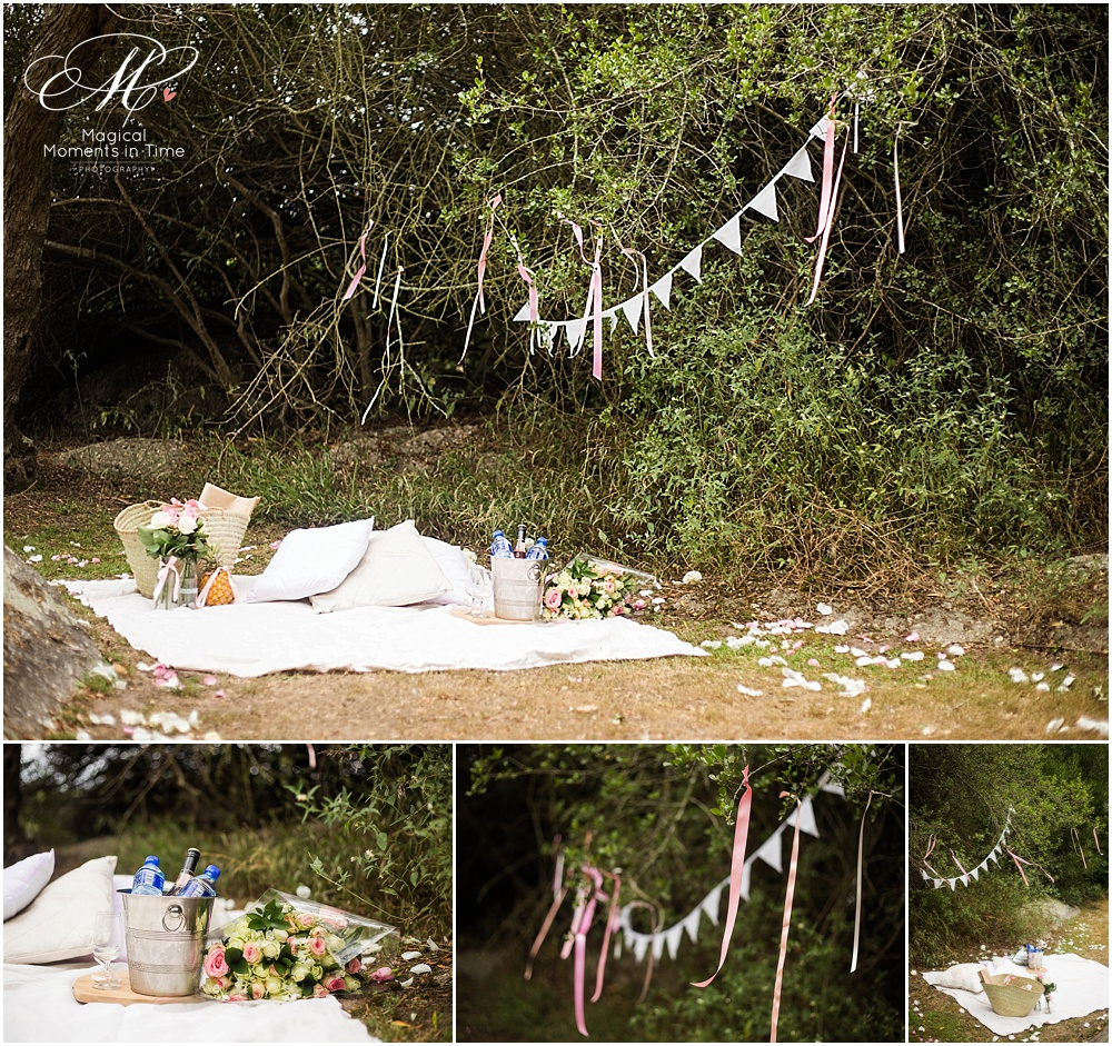 private spier picnic for proposal