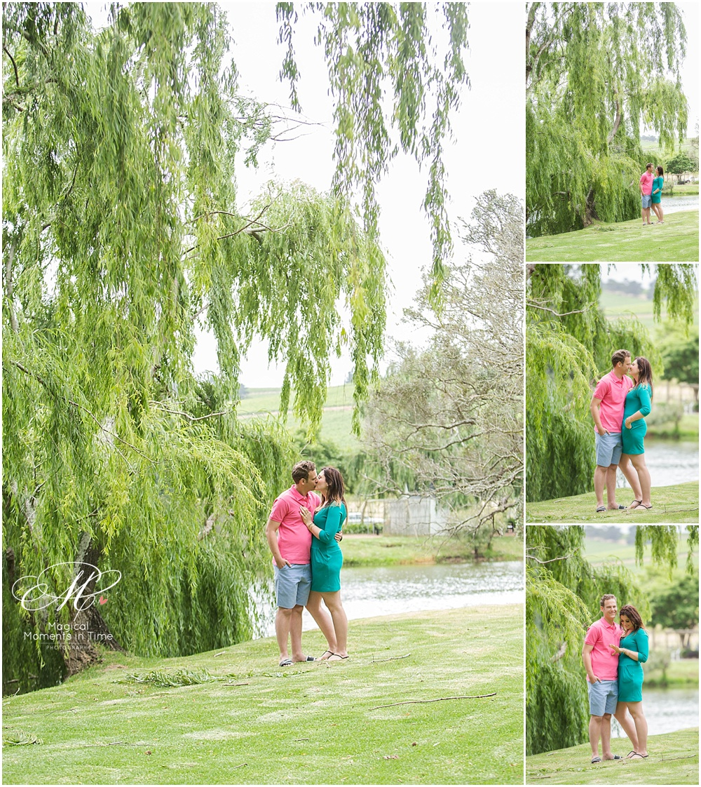 cape town engagement photography spier wine estate with willow trees