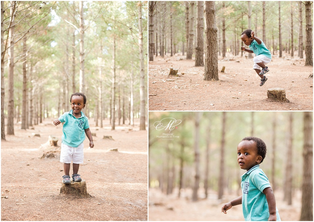 cape town maternity photography tokai forest boy jumping off a tree stump