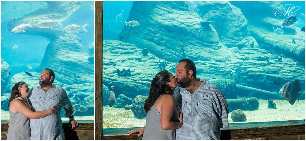Ushaka Marine World Durban South Africa Pool Image 6 Pictures to pin ...