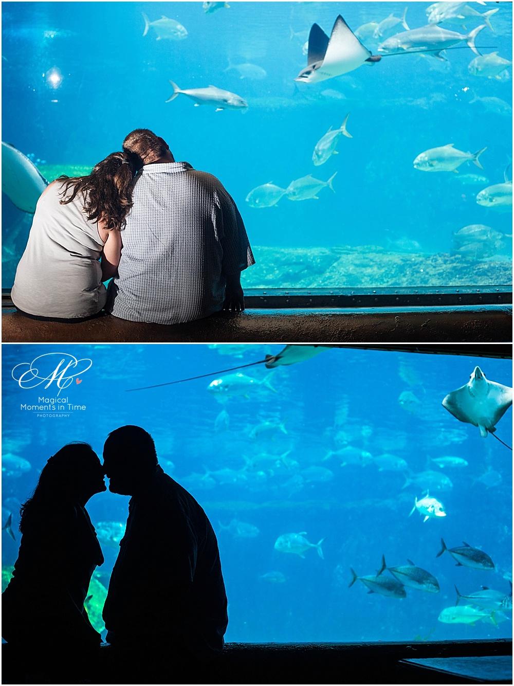 silhouette-ushaka-aquarium-durban-engagement-photography