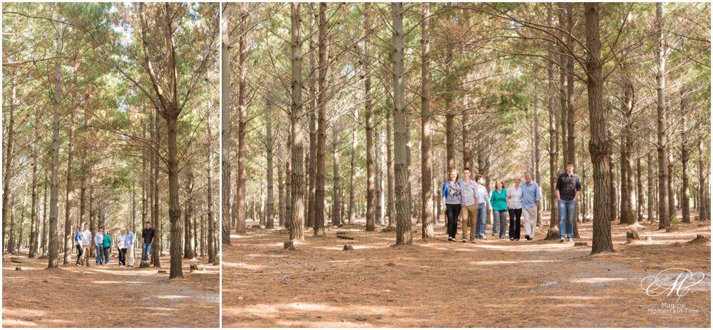 tokai-forest-wide-angle-family-photography
